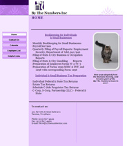 By The Numbers old website screencap